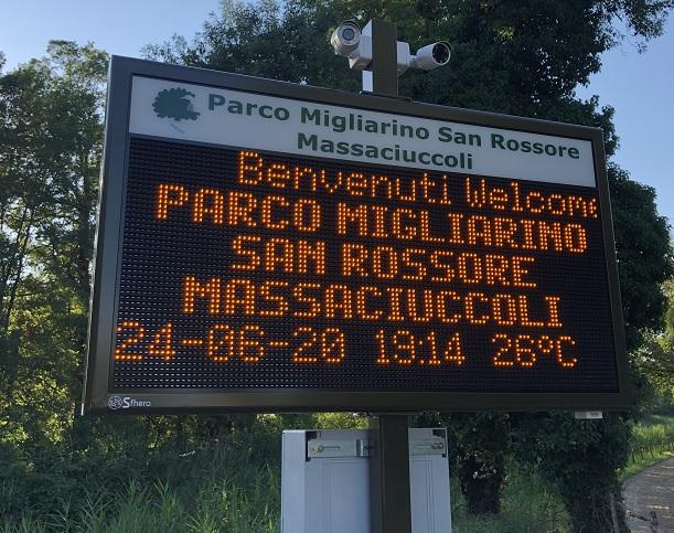 FAL-D San Rossore